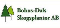 bohus-dal-skogsplantor
