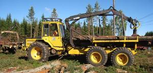 skogensveteraner_9702