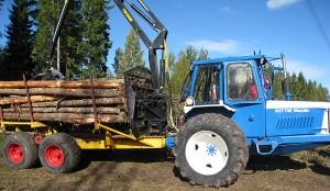 skogensveteraner_9777